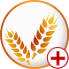Celiac Disease Diet & Tips by SendGroupSMS.com Bulk SMS Software