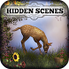 Hidden Scenes - Mother Nature by Difference Games LLC