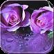 RainDrop Rose Purple Theme by Leopard Print Themes