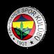Fenerbahçe Flashlight by TLHSoftware