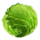 Cabbage Game by Donuts Bangkok Co., Ltd.