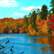 Live River Wallpapers(Offline) by kppatel