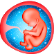 Pregnancy Week By Week - Tips by Drop sidee