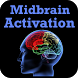 Midbrain Activation VIDEOs by Raxit Shah 509