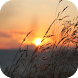Sunrise Wallpapers by Leafgreen