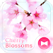 Lovely Theme-Cherry Blossoms- by +HOME by Ateam