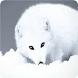 Arctic Fox Keyboard by Keyboard Creative Park