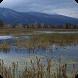 Beautiful Landscapes Wallpaper by Hojasoft, LLC
