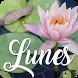 Feliz Lunes by V.S.J studio