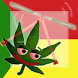 Swing Weed by Studio Game V