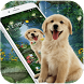 Cute Dog Wallpaper by Cool Theme Love