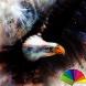 Bald Eagle Xperien Theme by Arjun Arora