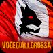 Voce GialloRossa - Roma by TC&C srl