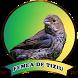 Femea De Tiziu Offline by axellayasmine7