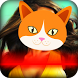 Cat: test face by AppAche