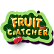 Fruit Catcher by DynaWEB Pvt. Ltd