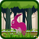 Rabbit Run - Endless Adventure