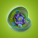 Cell Structure by Wiki Kids Limited