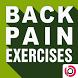 Back Pain Exercises by Body Program