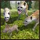 Hyena Wild Life Simulator by Yamtar Games