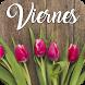 Feliz Viernes by V.S.J studio