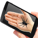 Spider On Hand Prank by Melocoton Apps
