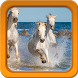 Horse Live Wallpapers by Energy Live Wallpapers