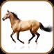 Horse Breeds Database by buzjabuzja