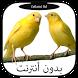 أجمل أصوات طائر الكناري ولحسون by fatlami ltd