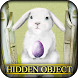 Hidden Object - Egg Garden by Hidden Object World