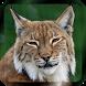 Learn Animal for Kids by Genom Studio