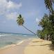 Beaches of Barbados by Myrl Ophelia Whitney