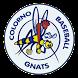 Colorno Baseball by Great Italy