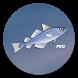 Справочник рыбака PRO by headcorp