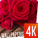 Flowers wallpapers 4k by Ultra Wallpapers
