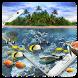 Aquarium Dolphin HD Wallpaper by Cool Theme Love