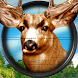 Jungle Deer Sniper Hunter - Jeep Safari 2018 by Dolphin Games