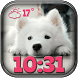 Puppies Weather Clock Widget by Cuteness Inc.