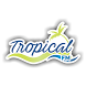 Tropical Fm Clevelândia by Ciclano Host