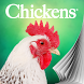 Chickens magazine by Lumina Media