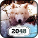 2048: Winterland Creatures by Difference Games LLC