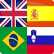 Logo Quiz - Guess The Flag by Shatzi games