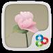 Zen GO Launcher Theme by Freedom Design