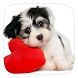 Love Dog Theme by yuqingtheme