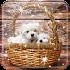 Cute Puppy Live Wallpaper by Desai Global