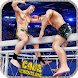 Cage Wrestling Superstars: Fight Revolution Mania by Bulky Sports