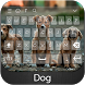 Dog Keyboard Theme by Styles Keyboard Forever