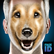 What are you dog face id scanner simulator by Golden factory rabbits