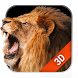 3D Live Wallpaper Lion Free by Weather Widget Theme Dev Team