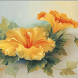 Hibiscus Jigsaw Puzzles by filsosoev